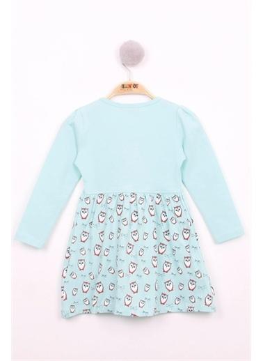 Toontoy Kids Toontoy Kız Çocuk Baykuş Baskılı Elbise Renkli